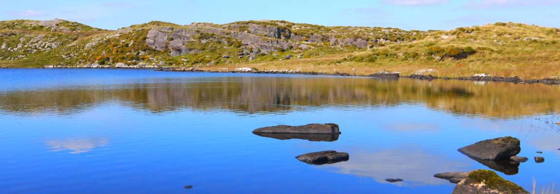 Walks - Fine Views - Fishing and more