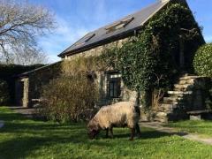 Rural Living in Ireland