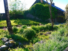 Enjoy our secluded 17 acres of informal gardens