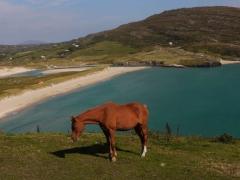 Barley Cove Beach West Cork